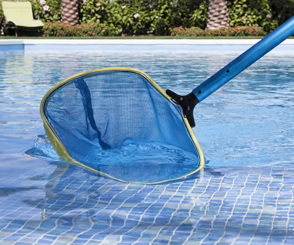 Cleaning the pool with a pool scoop net
